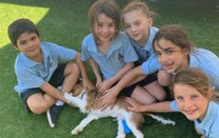 St Margaret Mary's Randwick North - students patting a puppy
